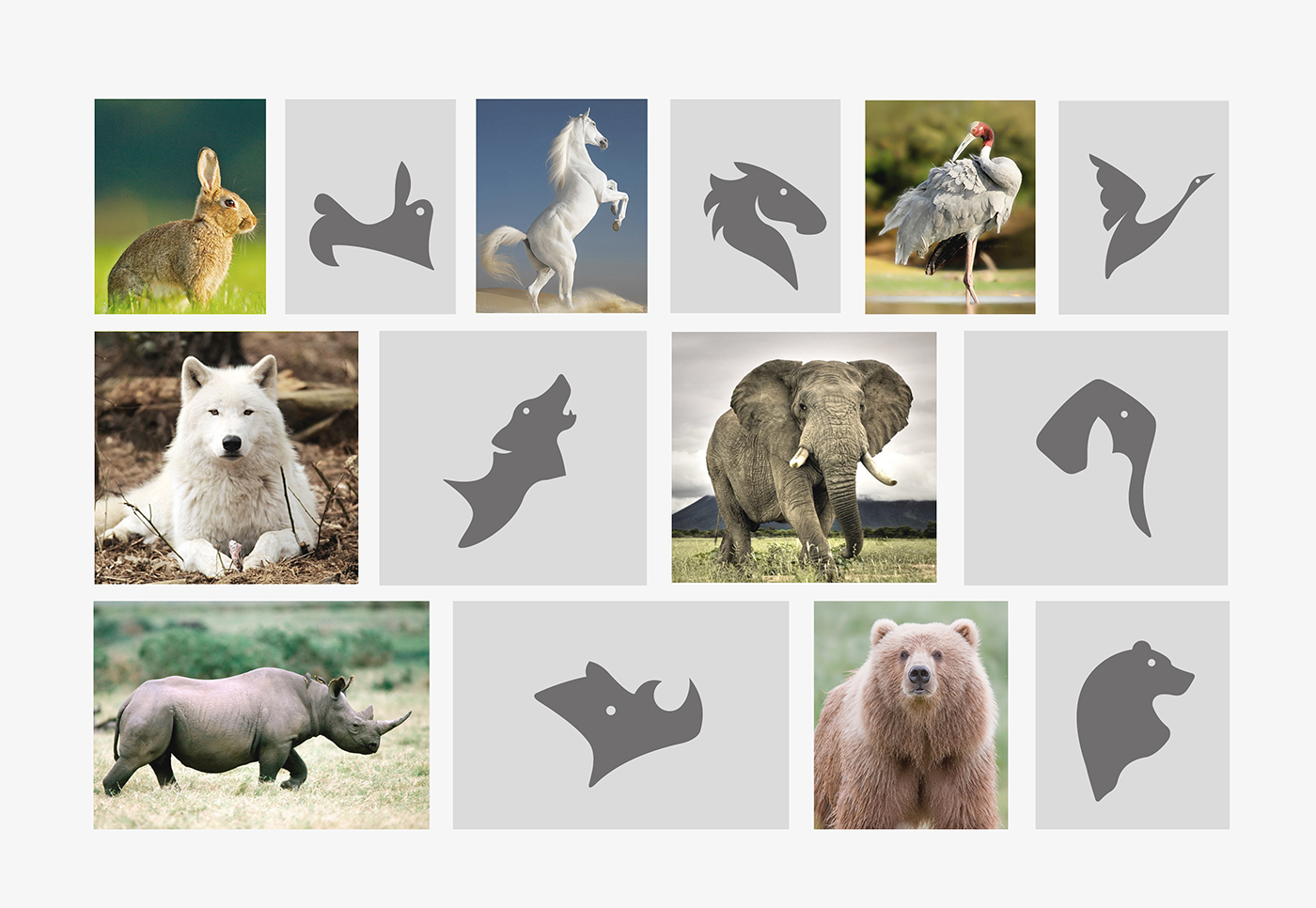 Animals symbol-bratus-zoo brand identity-vietnam design agency