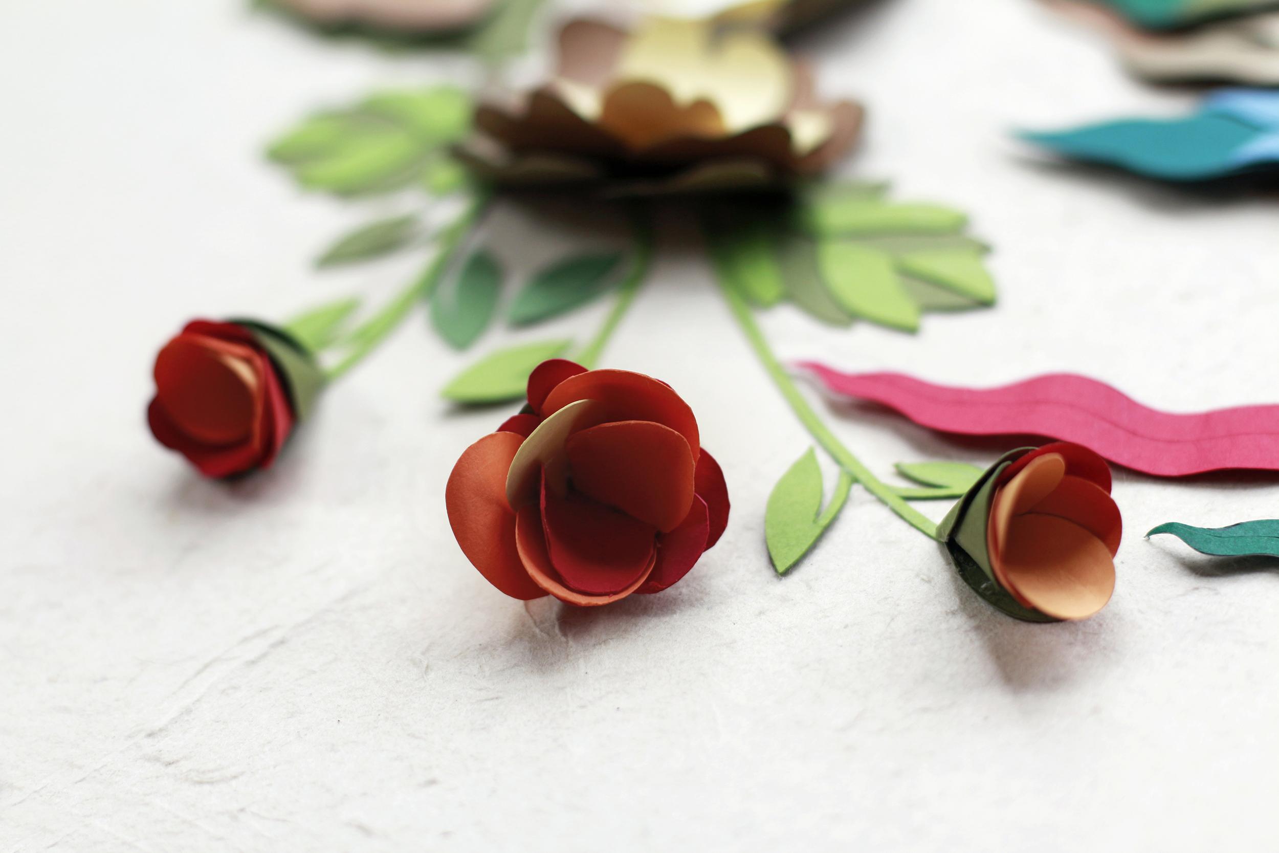hoa giay ngay tet-hoa dao giay